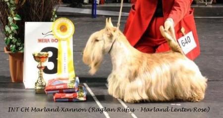 Marland Xannon